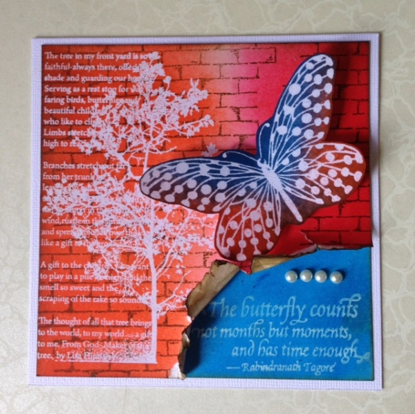 lordnagnes_butterfly
