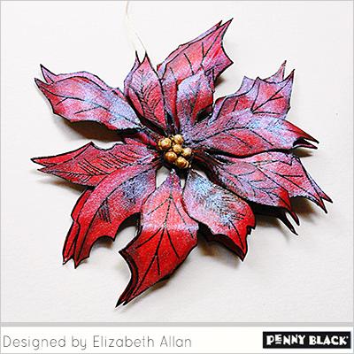 Velvety-Poinsettia