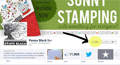 facebook-page-example
